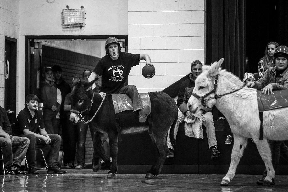Donkey Basketball